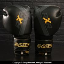 Reevo RXR Leather Sparring Gloves